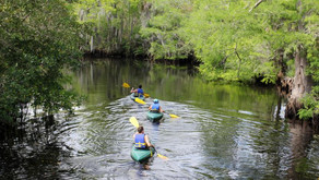 March into Nature with St. Lucie County's Guided Hikes