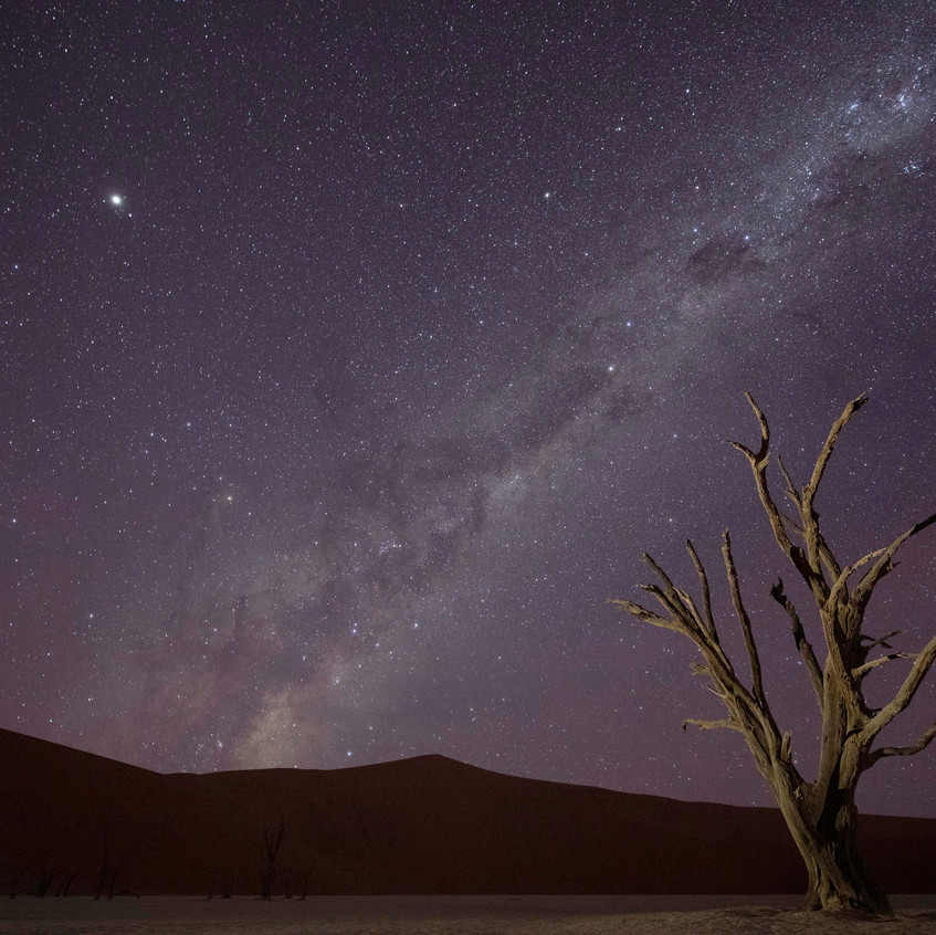 Namibia Night, Susan McClure - 1st Place