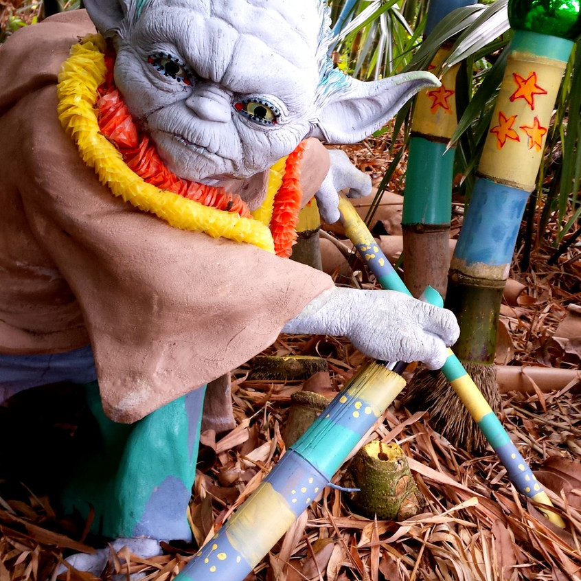 My Backyard Yoda, Shelly Polvere - 1st P
