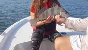 October Fishing Forecast