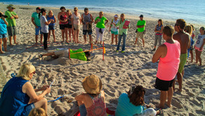 Turtle Digs Begin This Month