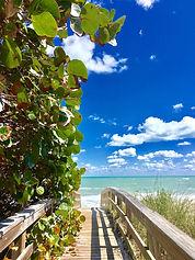 Sea Grape Trail.jpg