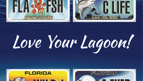 Love Your Lagoon with an Artful License Plate