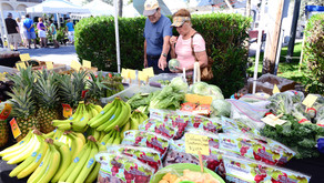 Fresh Food and Fun at Local Farmers' Markets