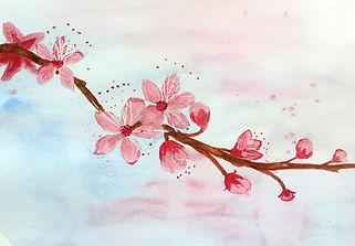 ja blossom.jpg