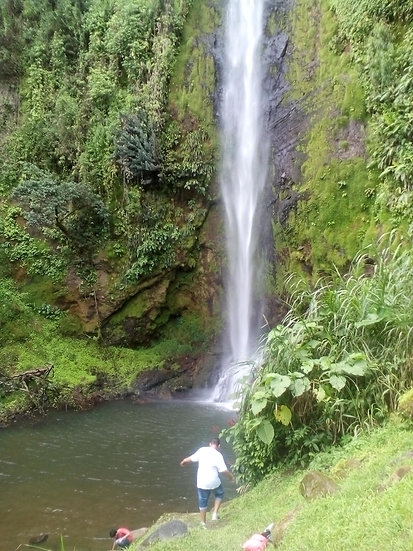 ONE DAY:  5 WATERFALLS, FLORA AND FAUNA IN ACTION