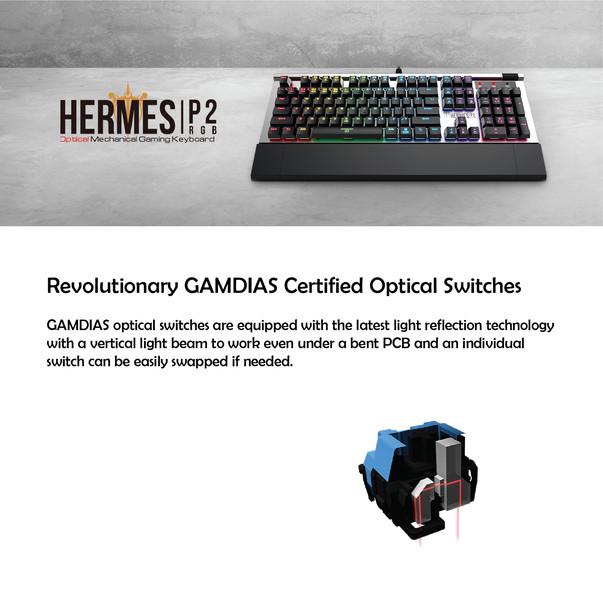 Hermes P2-02.jpg
