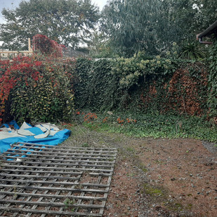 Garden Maintenance (5).jpg