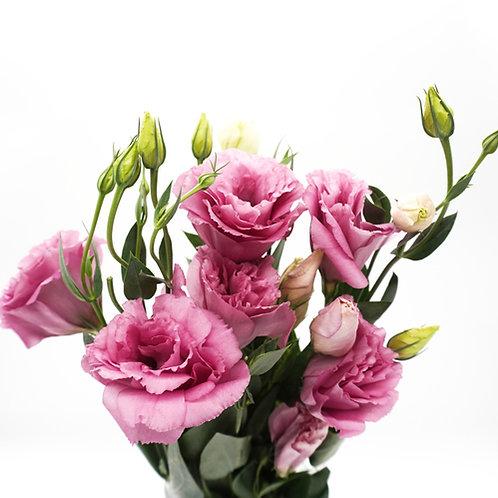 Lisianthus- Pink