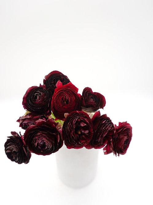 Ranunculus- Burgundy