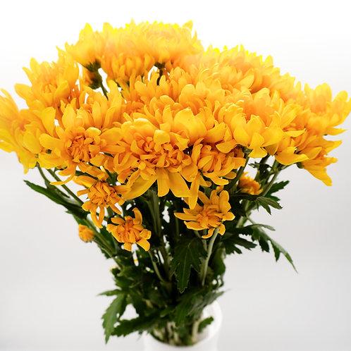 Cushion- Yellow