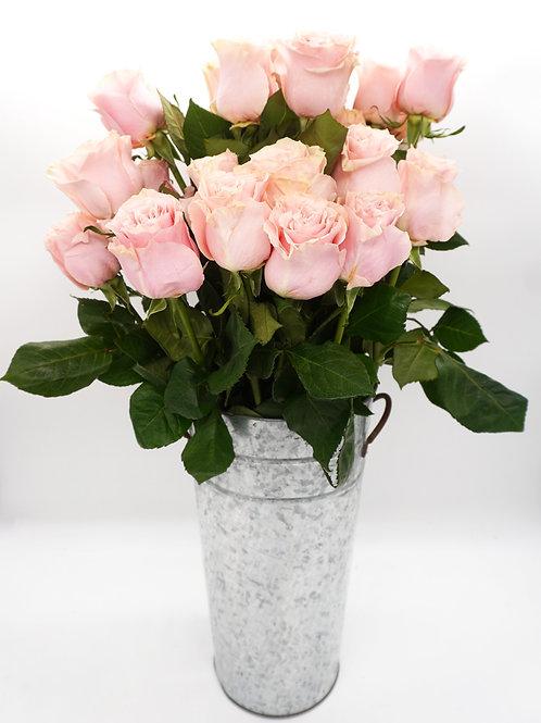 Pink Mondial (60 cm)