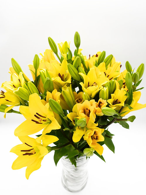 LA Hybrid Lilies- Yellow