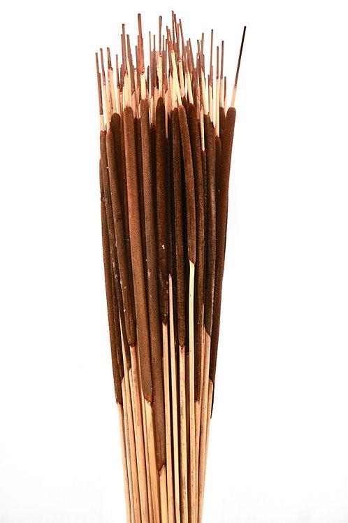 Pencil Cattail- Dark