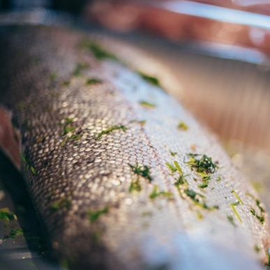 fiske.jpg