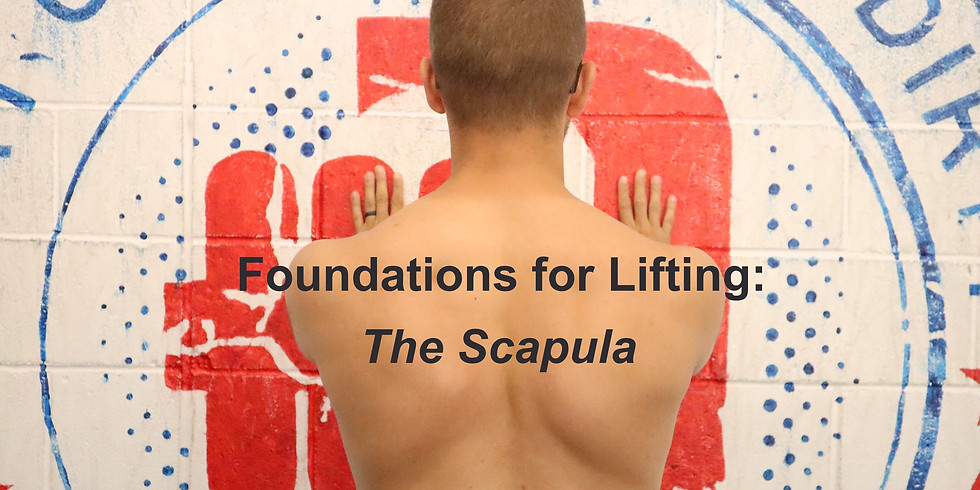 Foundations for Lifting: The Scapula
