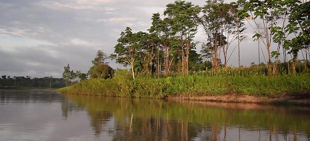 Taruaca river.png