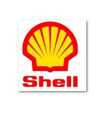 shell square small