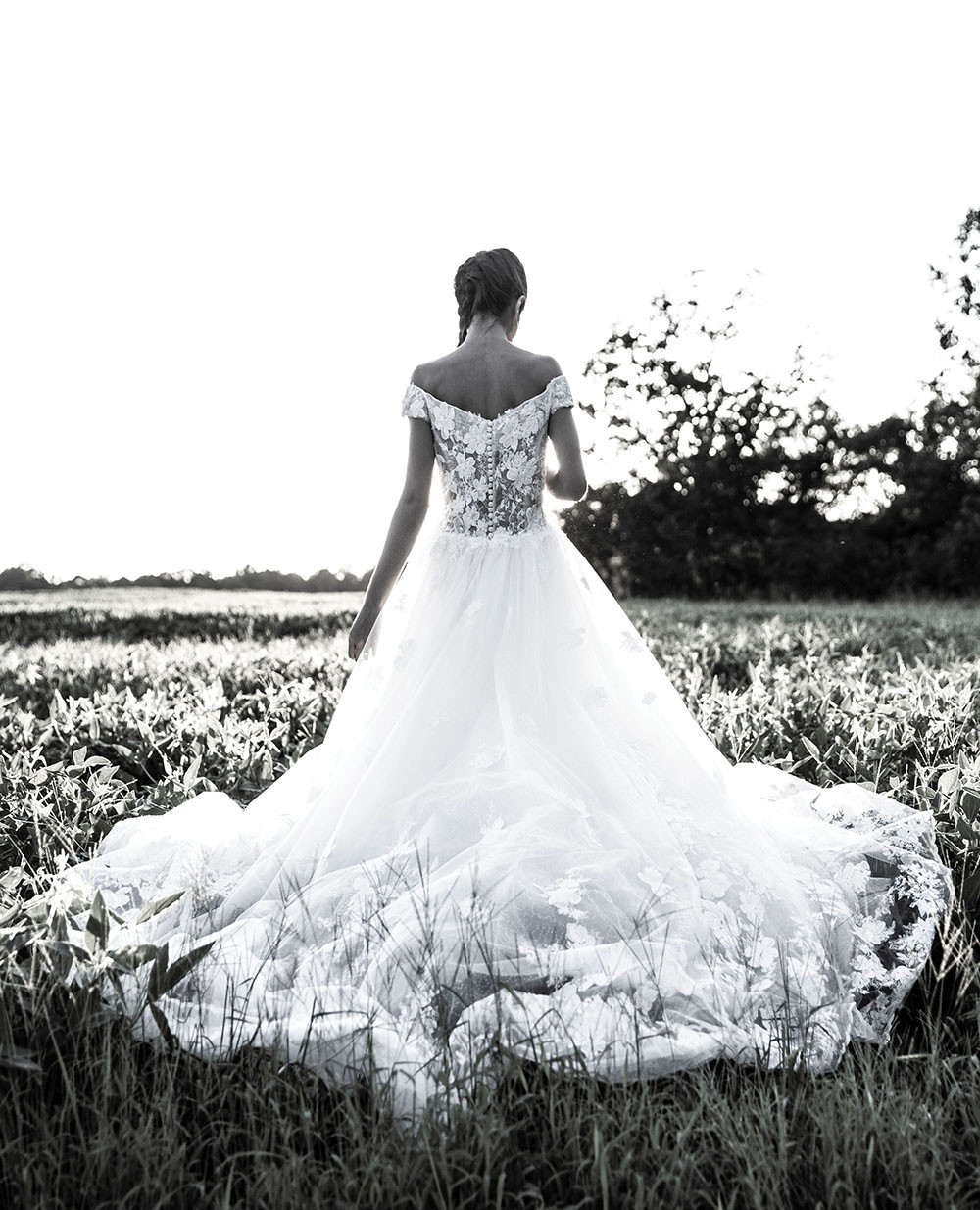 Floral lace ball gown from White Weddings worn by Mayada Jamila in a field of soy at The Barn at Lone Eagle Landing wedding venue