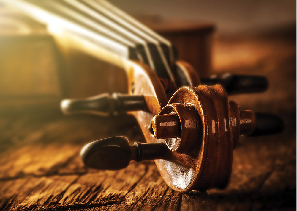 the curled neck of a wooden violin shines with its body and strings laying behind it reflecting sunlight