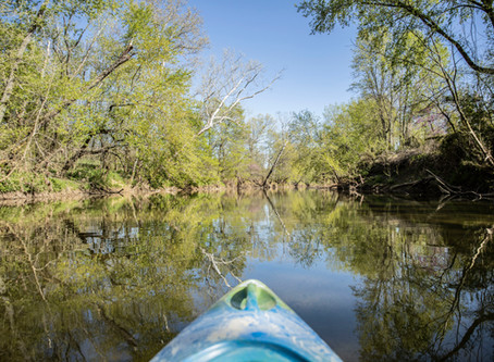 A Terrible Trip - On The Whitewater Creek