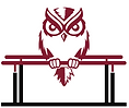 logo_temple-owl-pb-nowords.png