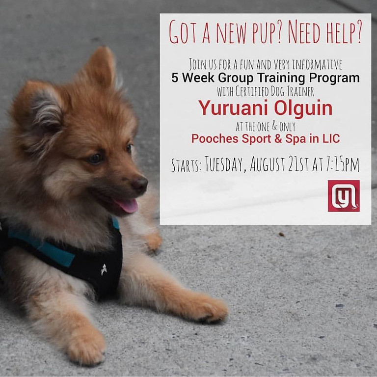 5 Week Group Training Program