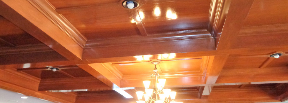 DR ceiling 2.jpg