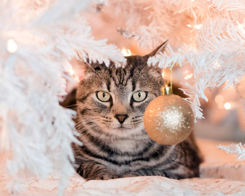 Goodbye Ornament