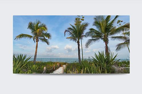 Captiva Palms 48 x 32