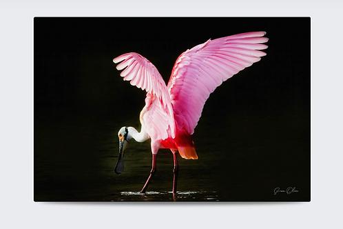 Pretty in Pink 40 x 30