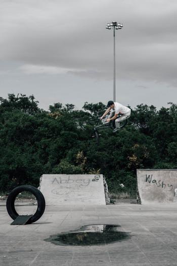 Rob Annis | T-bog gap