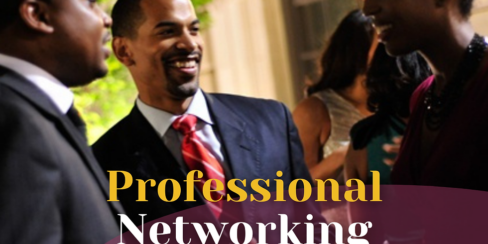 YBP Professional Networking Mixer