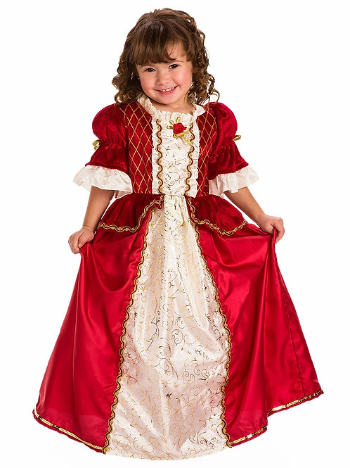 Winter Beauty Princess Gown