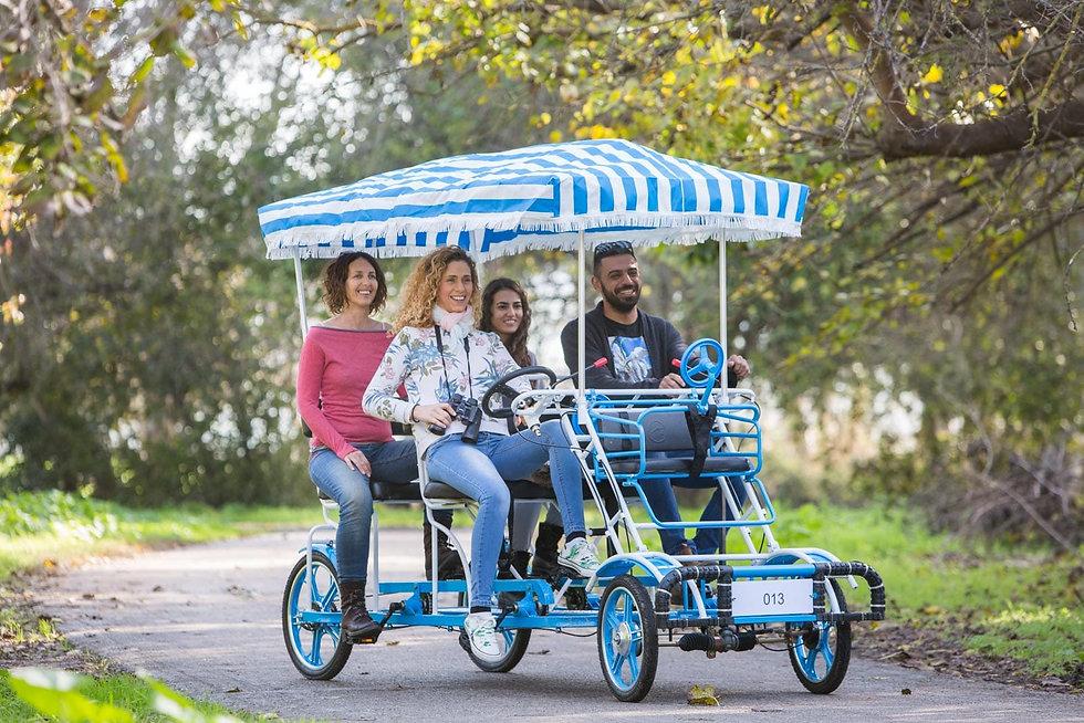 השכרת אופניים באגמון החולה