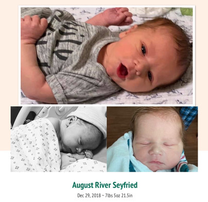 August River Seyfried