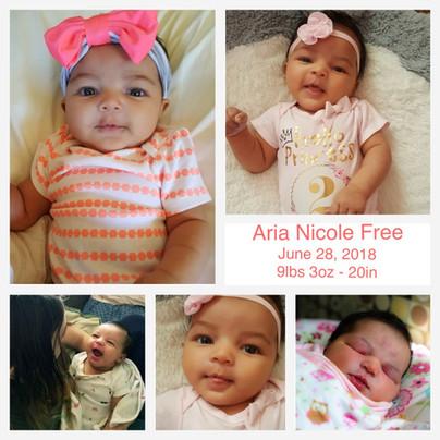 Aria Nicole Free
