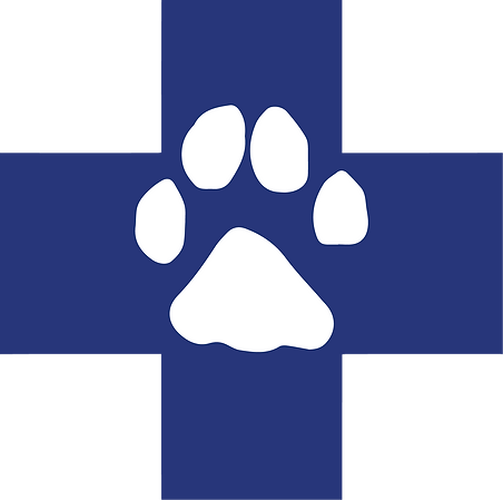 MSVC_logo.png