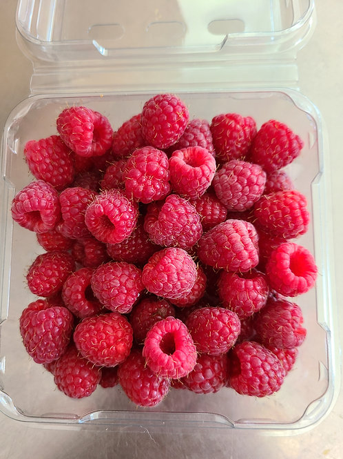 Organic Raspberries- flat of 12 red
