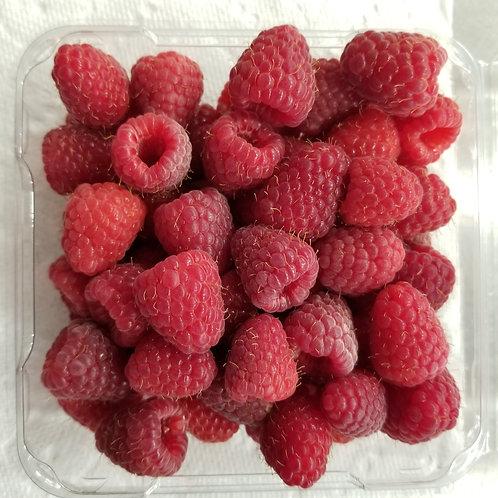 Organic Red Raspberries - Frozen 5# Bag
