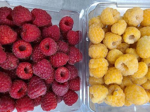 Organic Raspberries- mixed flat