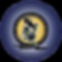 ATIR logo