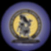 AISR logo