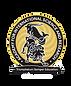 AISR logo.png