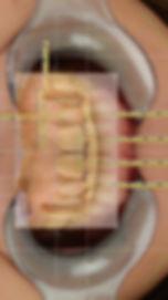 Student 2 Formato copia 2.003.jpeg
