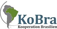 logo_kobra_color.png