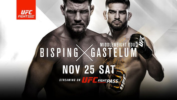 UFC analyse: Bisping vs Gastelum