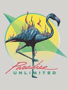paradise-wix copy.jpg