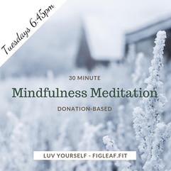 free meditation winter.jpg
