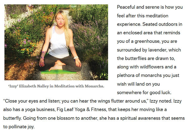 meditation with butterflies.PNG